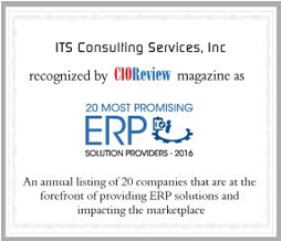 ITS Consulting Services